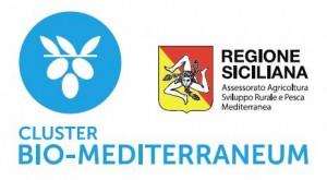 Cluster_Biomediterraneo1