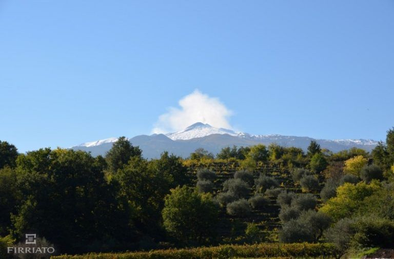 ©all copyright reserved by Firriato - Etna Autunno 21 e1418835948978 768x506 - Le terre