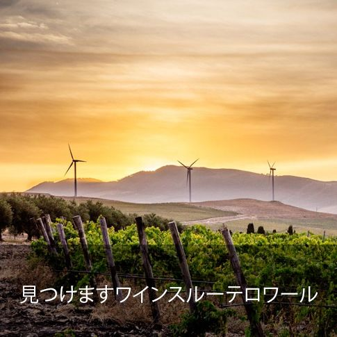 ©all copyright reserved by Firriato - cerca terroir jap - Homepage
