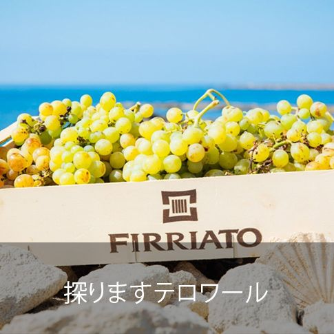 ©all copyright reserved by Firriato - esplora terroir jap - Homepage
