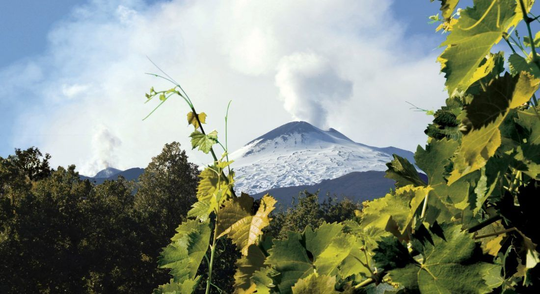 ©all copyright reserved by Firriato - 1 Leruzione dellEtna 1100x600 - Heroic viticulture: Etna and Favignana