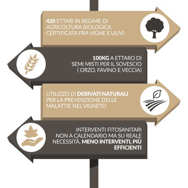©all copyright reserved by Firriato - Il Biologico certificato una scelta di campo - Sostenibilità e Biologico