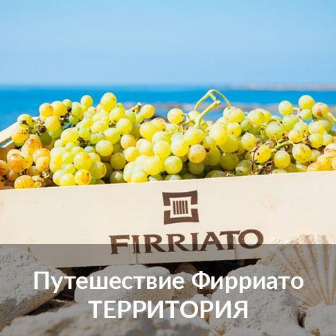 ©all copyright reserved by Firriato - esplora terroiri russo - Homepage