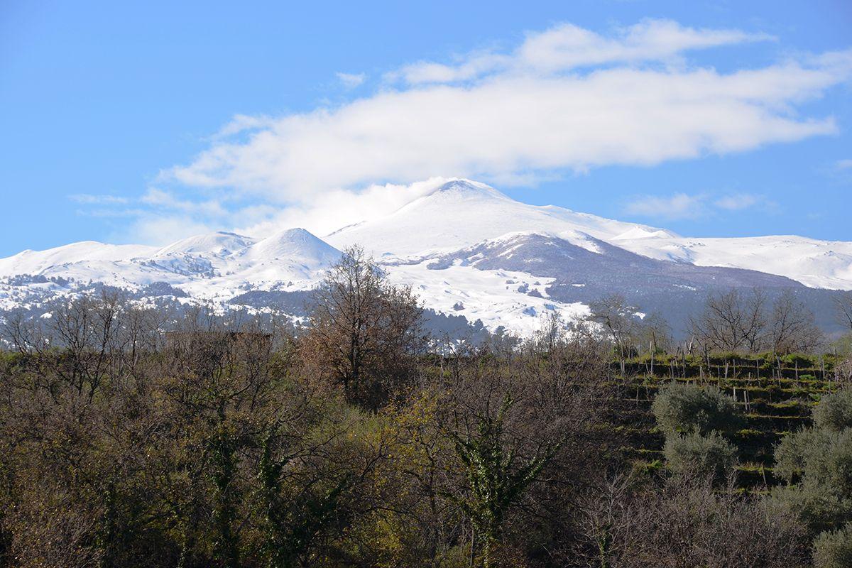©all copyright reserved by Firriato - degustazioni i vini del vulcano 1 - Visite e degustazioni